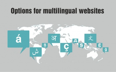 Options for multilingual websites